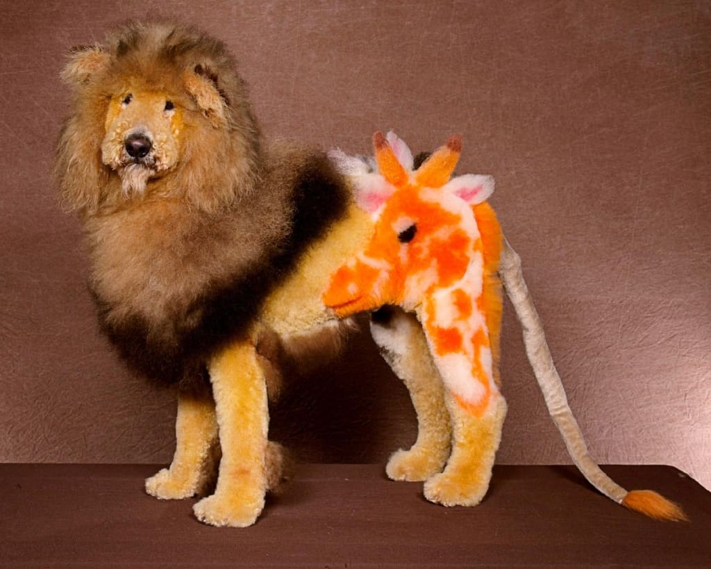 15 Amazing Examples Of Creative Dog Grooming