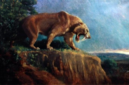 14 Extinct Animals We Could Clone Right Now