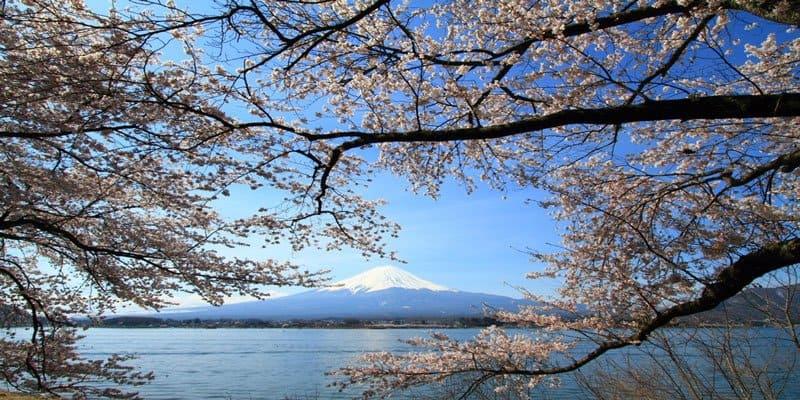 Beautiful Natural Scenery Of World