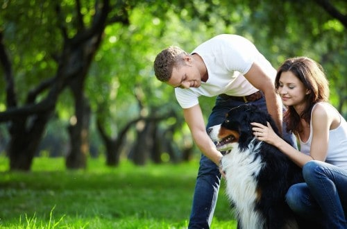 10 Things You Should Know About The Dog Lover You're Dating