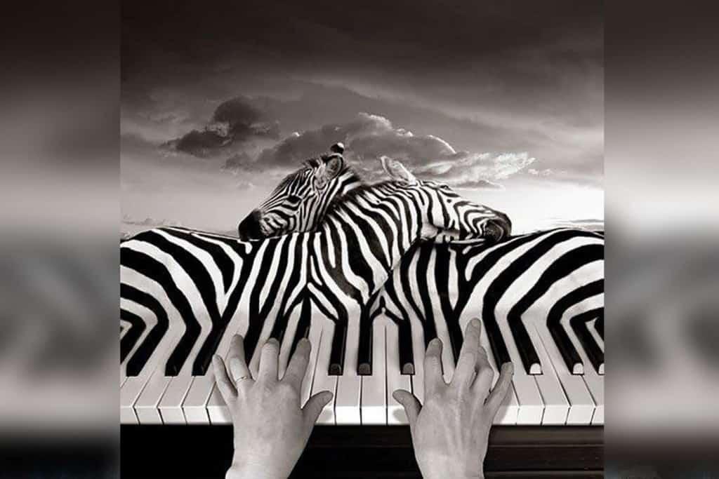optical illusions sounds