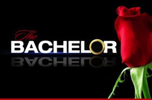 "20 Of The Funniest ""The Bachelor/The Bachelorette"" Contestant Jobs"