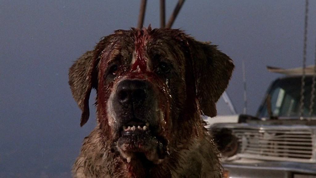15 Of The Most Shocking Killer Animals In Movies