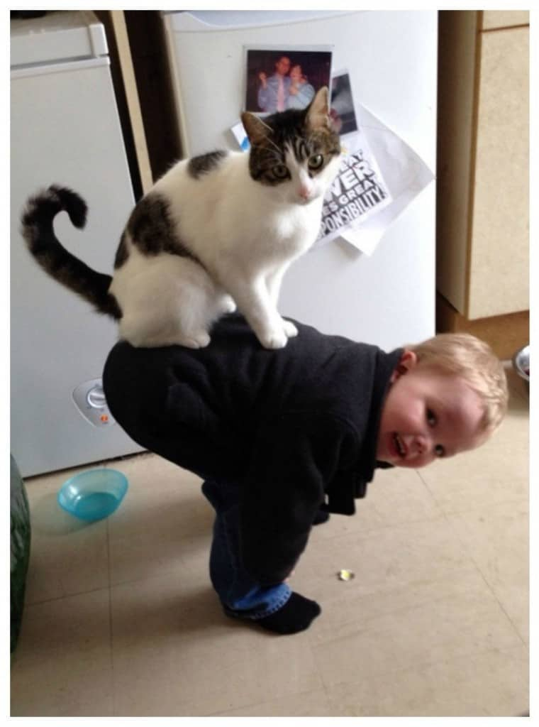 20 Adorable And Funny Photos Of Kids With Animals