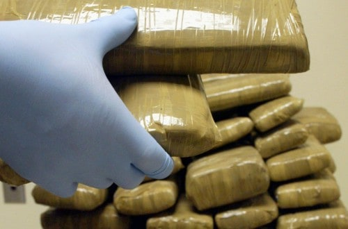 20 Weirdest Places Drugs Have Been Smuggled