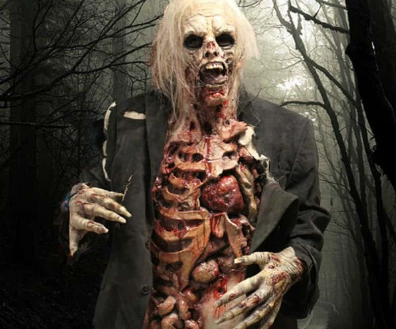20 most shocking zombie gifts for geeks realistic zombie costume negle Choice Image