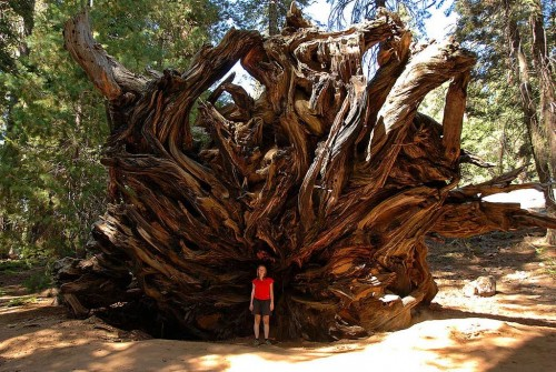 20 Amazing U.S. Wilderness Areas To See Before You Die