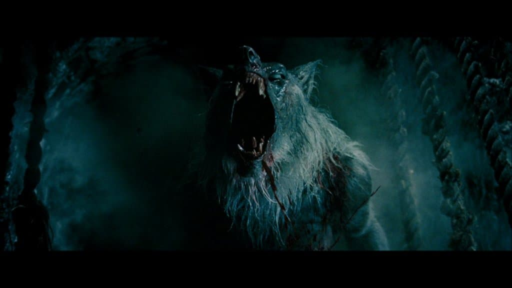 Most Interesting Facts >> 20 Interesting Facts About Werewolves You Need To Know