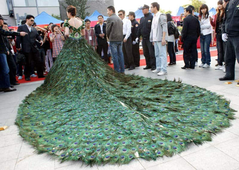 The Famous Pea Dress Was Designed For A Bride Who Wanted To Stand Out Beyond Normal This Vera Made Of 2009 Feathers