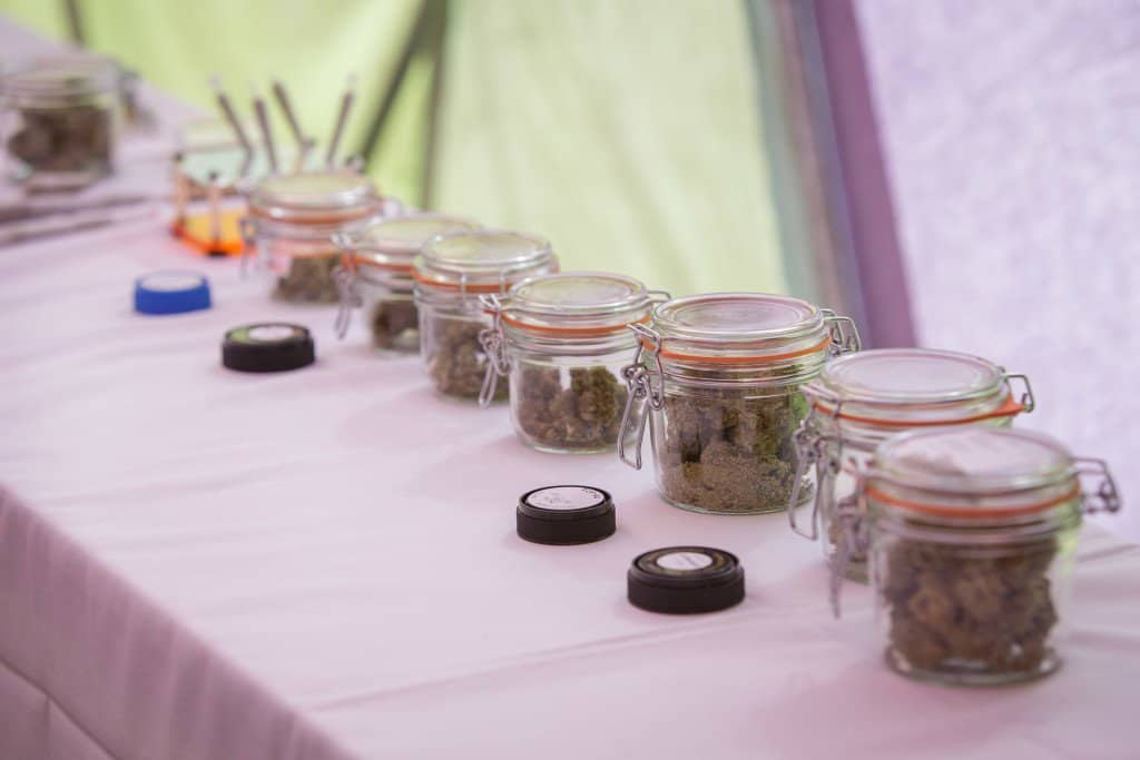 Wedding Couple Decide To Host A Weed Bar