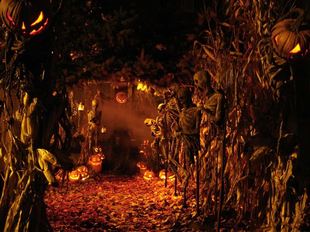 10 little known facts about halloween