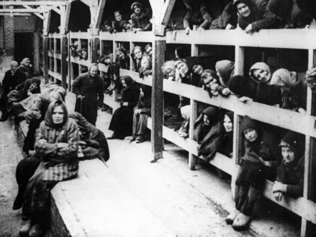 horrifying holocaust pictures