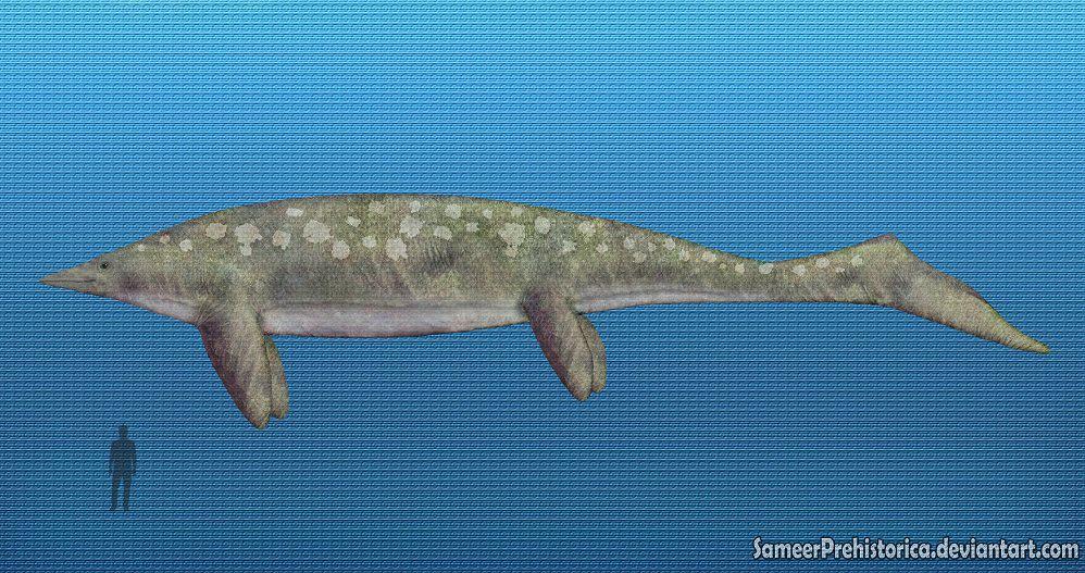 10 Prehistoric Sea Creatures We Re Thankful Are Extinct