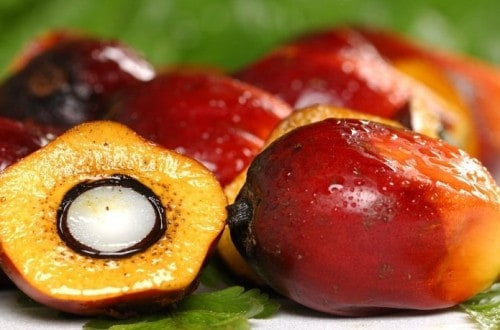 10 Exciting Benefits Of Red Palm Oil
