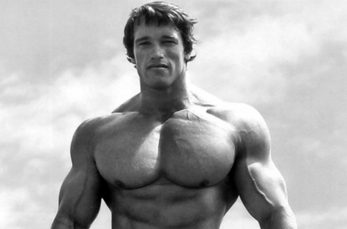 10 Tips To Quickly Gain Schwarzenegger-Like Muscles