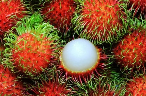 10 Of The Strangest Fruits You'll Ever See