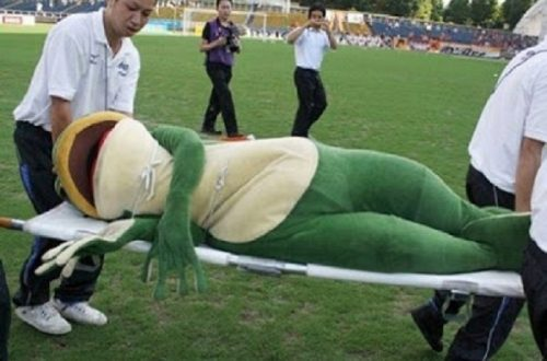 10 Of The Funniest Mascot Fails Of All Time
