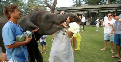 10 Of The Worst Wedding Ideas Ever